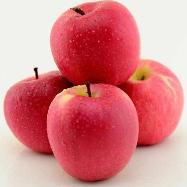 怡果鮮 ·甘肅靜寧蘋果85果(約5斤)水果