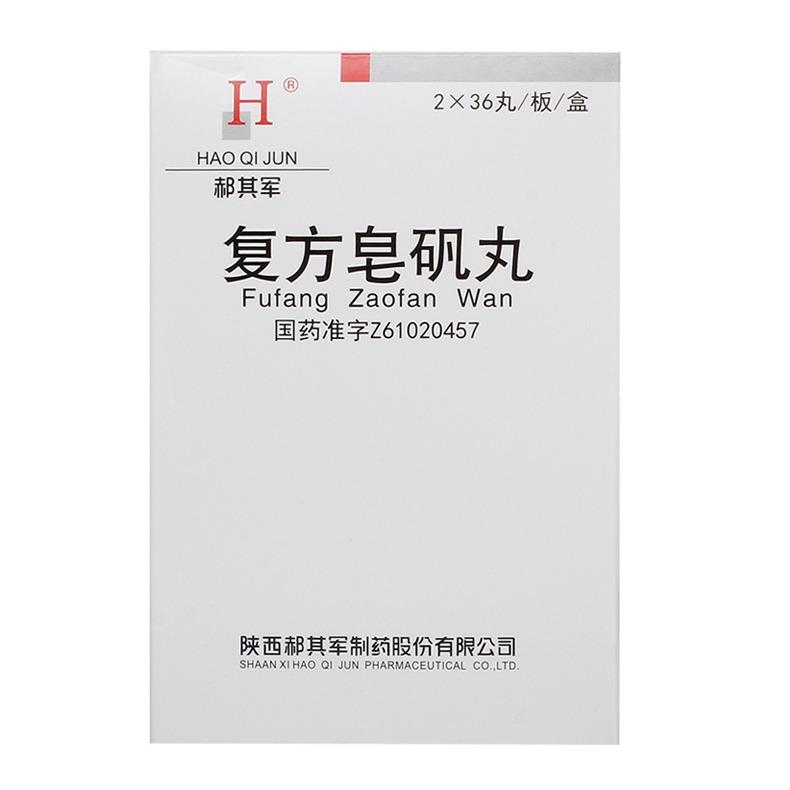 復方皂礬丸(郝其軍)(醫)
